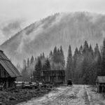 FotoAno - Gosia Szatan